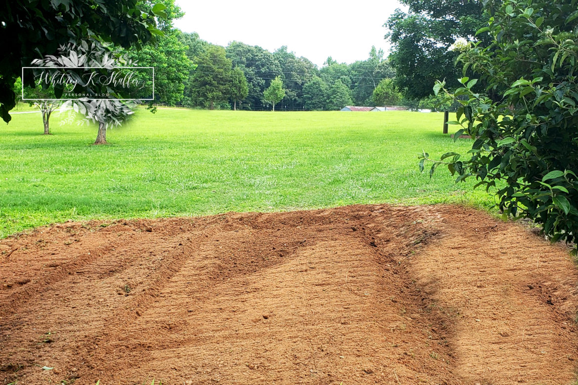 Red Clay Soil , Pasture, Top Five Gardening Tools For Gardening In Clay Soil