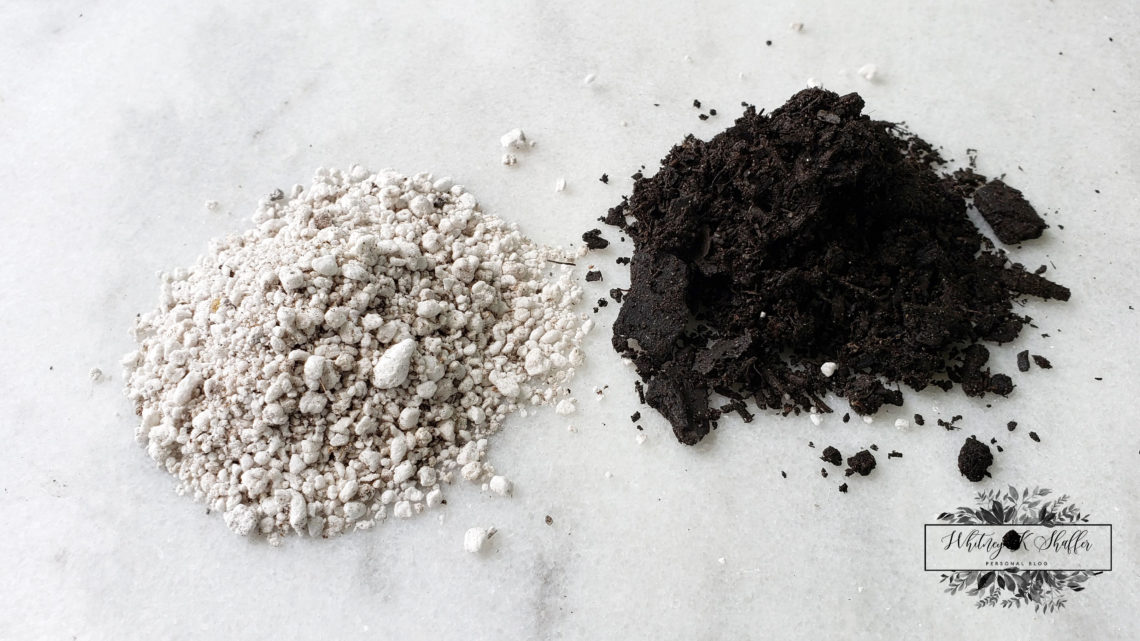 Read How To Do It Yourself Succulent Soil Mix Recipe
