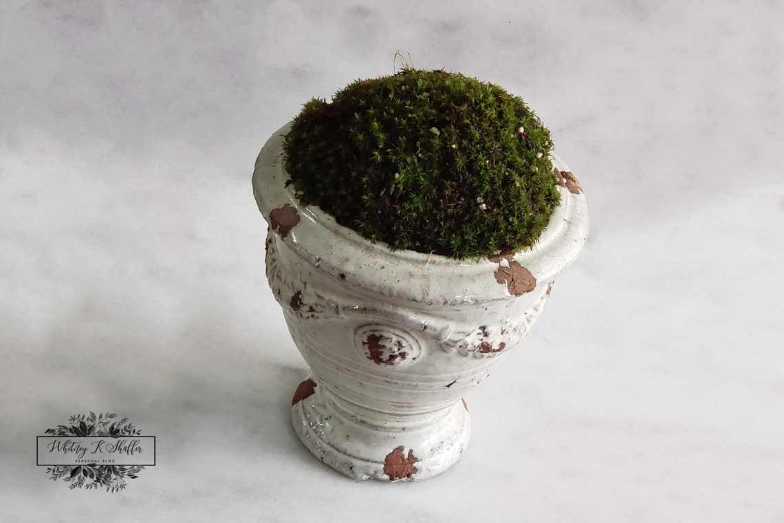 moss topped urn